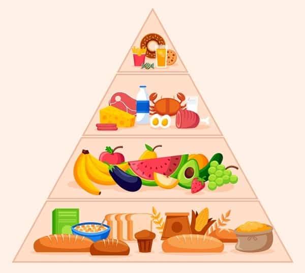 Ce este piramida alimentelor?